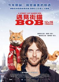 遇見街貓BOB A Street Cat Named Bob