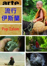 流行伊斯蘭