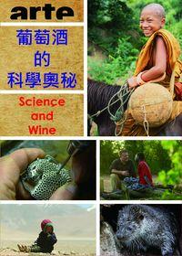 葡萄酒的科學奧祕