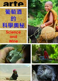 葡萄酒的科學奧祕 Science and Wine