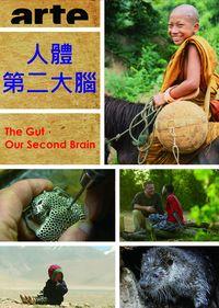 人體第二大腦 The Gut,Our Second Brain