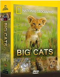 大貓世界 Big Cats