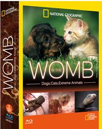 生態孕育奇觀 In The Womb