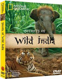 狂野印度 Secrets of Wild India
